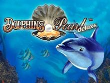 Dolphin's Pearl Deluxe в клубе Вулкан
