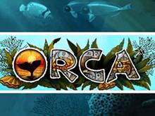 Бесплатные автоматы Orca Вулкан