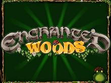 Виртуальный игровой аппарат 777 Enchanted Woods